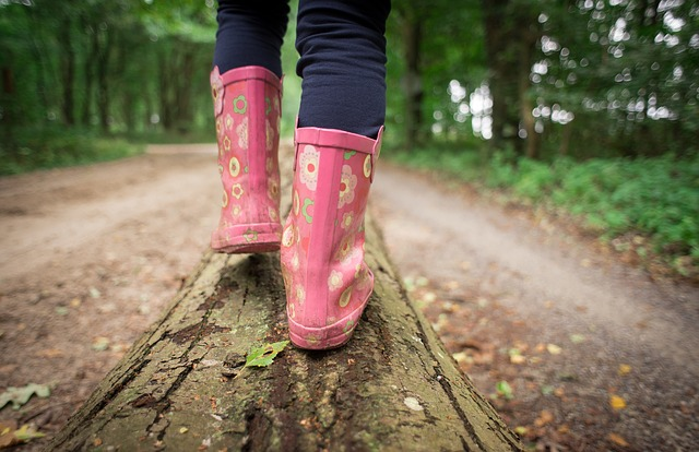 Ab in den Wald – Die Umweltspürnasen auf Achse