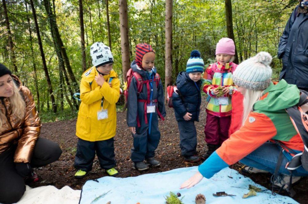 Die Natur erforschen – Waldtag am 17.10.2020