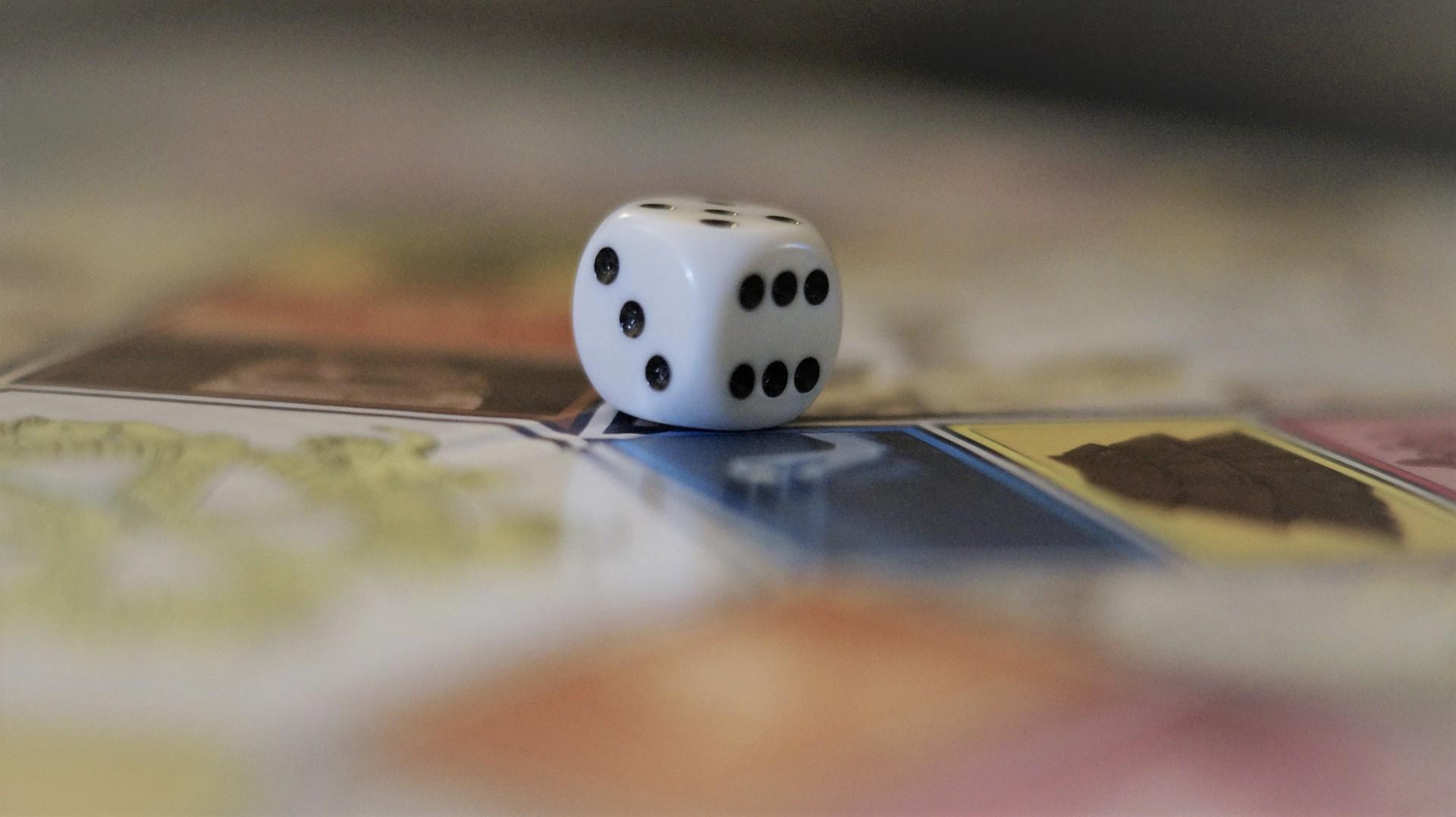 Didaktische Spiele zum Thema Ökologie